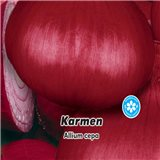 Cibule jarní červená - Karmen  - semena 2 g