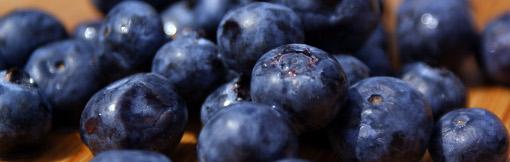 Borůvky jsou léčivé ovoce, které pomáhá proti mnoha nemocem.