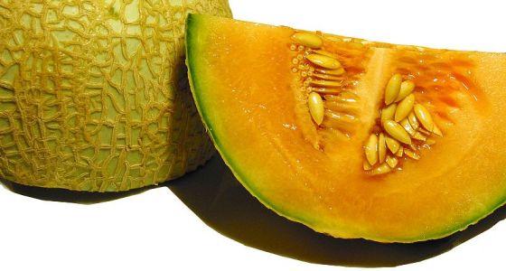 Rozkrojený cukrový melón