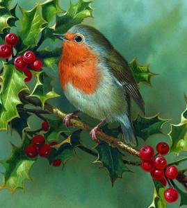 Cesmína je tradiční vánoční ozdobou v Anglii. Často bývá zobrazována spolu s červenkou.