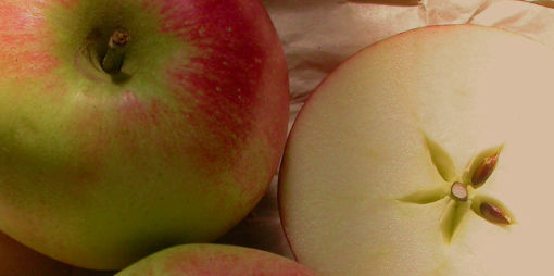 Plody jablone