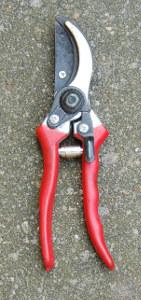 Na prořezávání stromů používáne pilku nebo nůžky, ale vždy vyčištěné a dezinfikované.