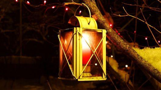 Ozdobte svou zahradu v prosicni vánočními světly.