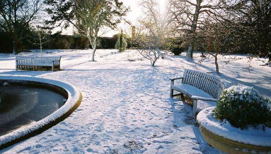 Sněhová nadílka na zahradě je kouzelná.