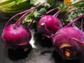 Kedluben - lahodná košťálová zelenina