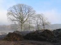 Podzimní hnojení a příprava půdy