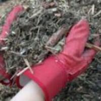 Mulčování - zbavte se plevele a špíny na plodech