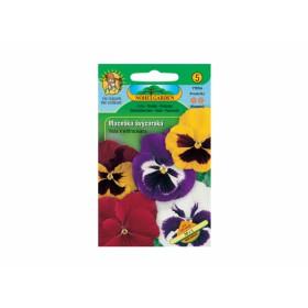 https://www.semena-rostliny.cz/12444-thickbox/viola-x-w-macel-l-v-je-sm.jpg