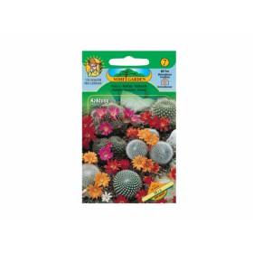 https://www.semena-rostliny.cz/12514-thickbox/cactacea-kaktusy-sm.jpg