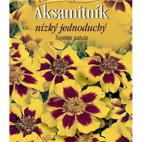 https://www.semena-rostliny.cz/22619-thickbox/tagetes-pat-aks-je-lll-hn.jpg