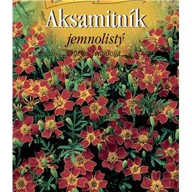 https://www.semena-rostliny.cz/22635-thickbox/tagetes-ten-aks-jemnol-ate.jpg