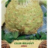 Celer bulvový ALBIN